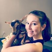goat yoga profile